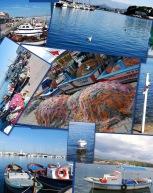Alrededores Izmir