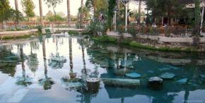 Antigua piscina de Hierápolis