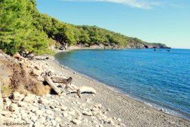 Pequeña playa de Phaselis