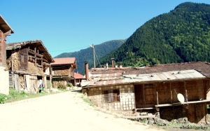 Houses in Uzungol