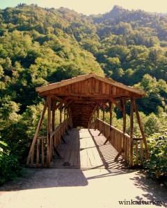 Puente alrededores Üüngöl
