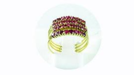 anillo de haren 1