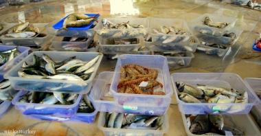 Pescado a la venta