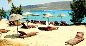 Tumbonas que por un módico precio se alquilan para que lka familia o acompañantes puedan también disfrutar de un día de playa