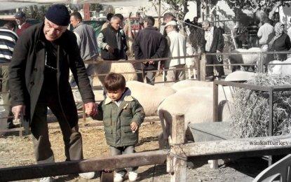 Mercado de ganado de Urla