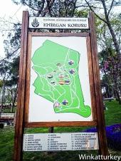 Entrada a Emirgan con explicación de los parterres de tulipanes
